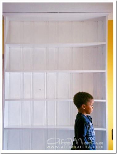 builtinbookshelf2